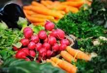 农副产品是什么行业(附2020中国农副产品市场发展现状)