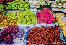 2020年水果超市靠什么赚钱(附2020年水果市场行情)