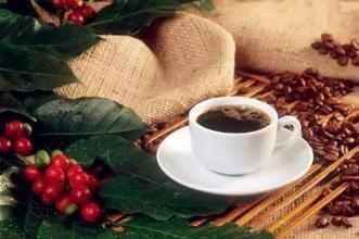 咖啡豆和咖啡粉哪个好 这些咖啡你爱喝哪个牌子?