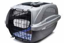 狗狗航空箱什么样的好(怎么给狗狗选择航空箱