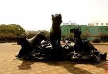 上海动物园怎么走?最完整的旅游攻略