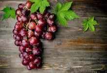 葡萄怎么洗干净(半紫半绿的葡萄能吃吗)