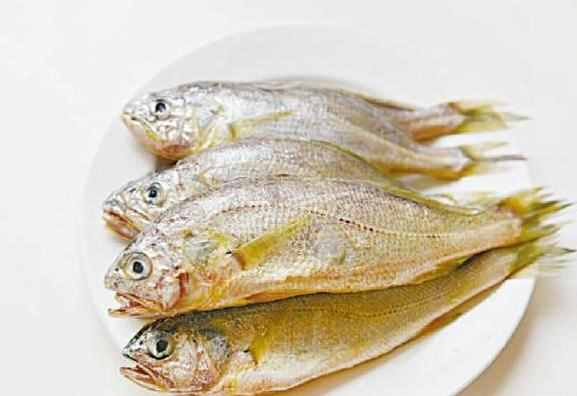 中国人最喜欢的10类淡水经济鱼,人工养殖前景广、赚钱多