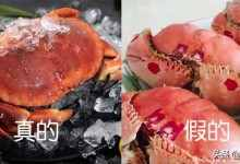 面包蟹多少钱一斤?面包蟹其实价格很便宜