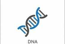 核酸检测是什么意思?新冠病毒核酸检测原理是什么?
