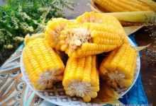 水煮玉米最忌用清水煮,多放这2样东西,煮出来的玉米香甜又软