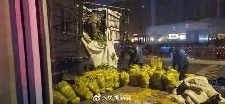 沈阳向武汉运130吨大白菜什么情况 沈阳向武汉运130吨