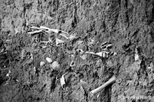 山西高平发现疑似长平之战尸骨坑!图片详情曝光长平之战尸骨