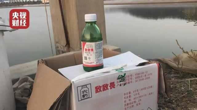 山东全省排查海参养殖企业怎么回事 山东全省为什么排查海参养