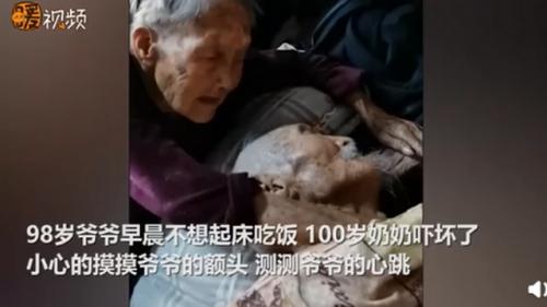 100岁奶奶贴脸陪伴98岁爷爷 画面详情曝光背后故事令人感动