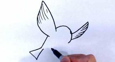 怎么画小鸟 如何画一个简单的飞翔的小鸟