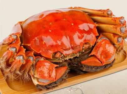 螃蟹配什么吃?螃蟹可以搭配哪些菜