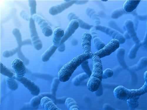 微波炉多久可以杀死病毒细菌?用微波炉能消毒吗
