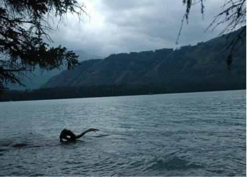 喀纳斯湖水怪真相?喀纳斯湖水怪是真的吗