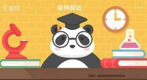 森林驿站9月28日答案 为什么长江江豚妈妈在活动时背上经常驮着