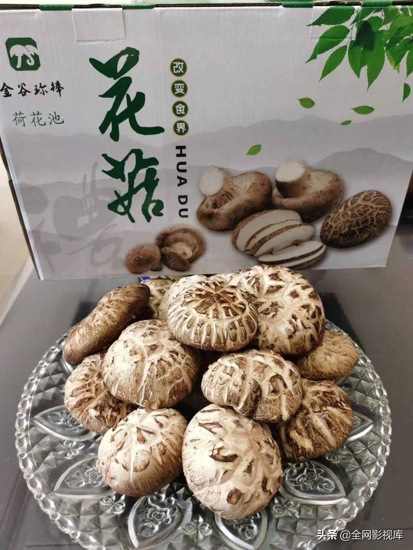 花菇和香菇的区别 花菇的营养价值居然这么高