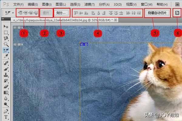 Photoshop切片:选择、移动和调整切片,简单且实用